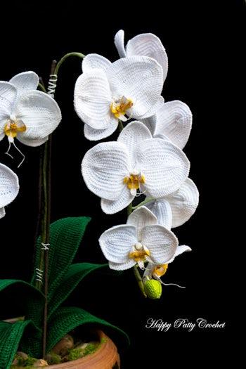 Free Video Tutorial for a Crochet Flower Orchid ⋆ Crochet Kingdom | 525x350